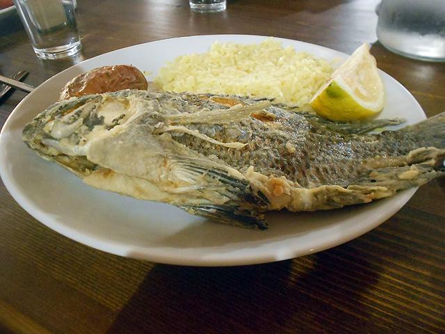 Tilapia o pescado de San Pedro en Yardenit, Israel