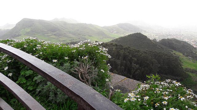 Paseo en coche por los montes de Anaga en Tenerife